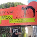 Exterior-Alley-Cat-2