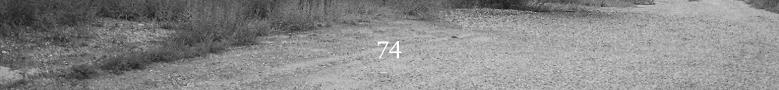 74 banner